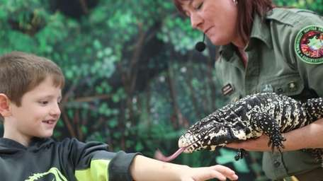 Amy Travers, from the Rainforest Reptile Show, holds