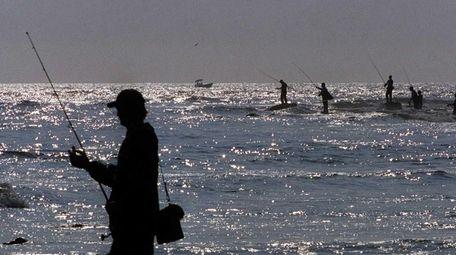 Striped bass fishing at Montauk Point