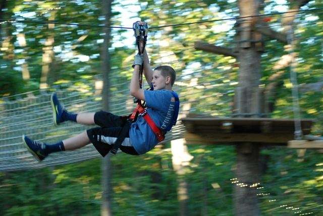 Zip lines - cables that kids, teens and