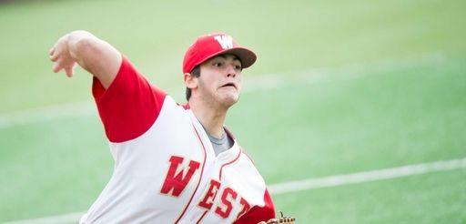Half Hallow Hills West pitcher Bradley Camarda pitches