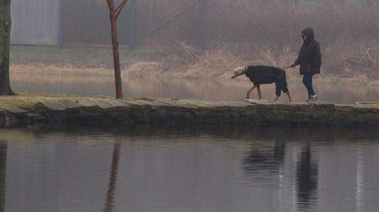 A woman walks a dog in the fog