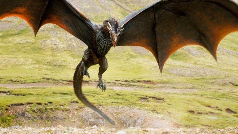 Dragons (