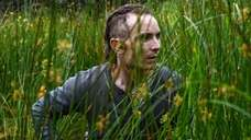 "TThe Survivalist"" is playing at Tribeca Film Festival."