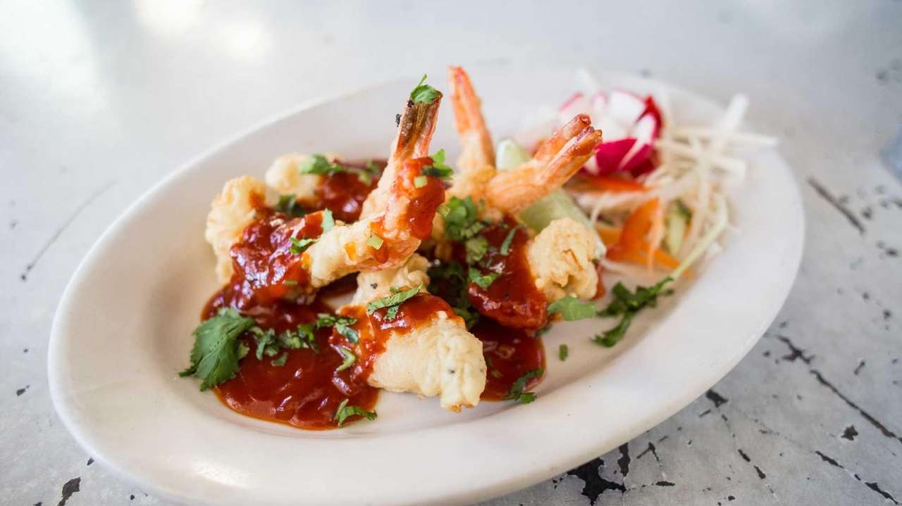 The Best Indian Restaurants On Long Island Newsday