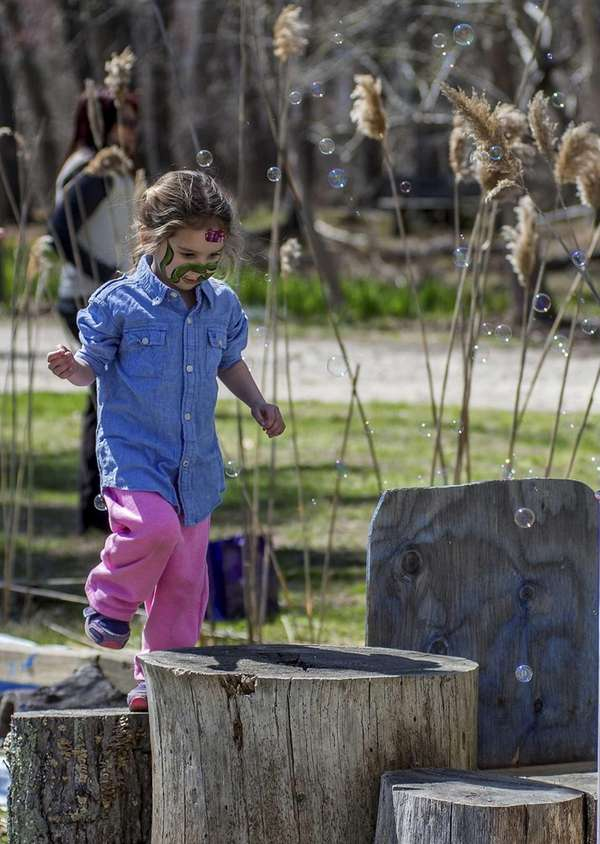Anna Bolze, 3, of Setauket, walks the Alewife