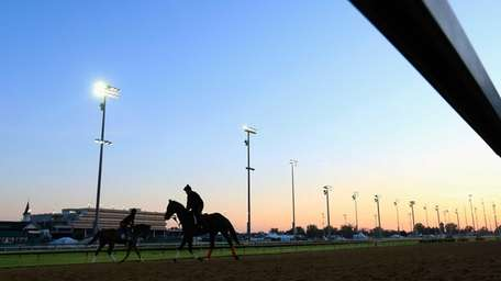 Horses go over the track during morning training