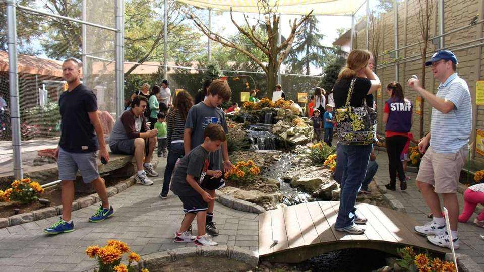 Moms and grandmothers can get free admission to