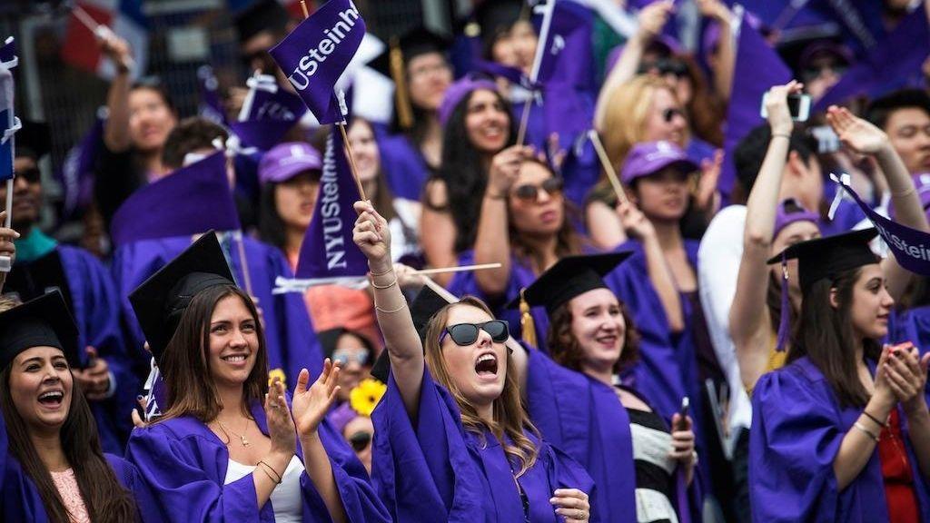 NYU, like many large universities, offers an array