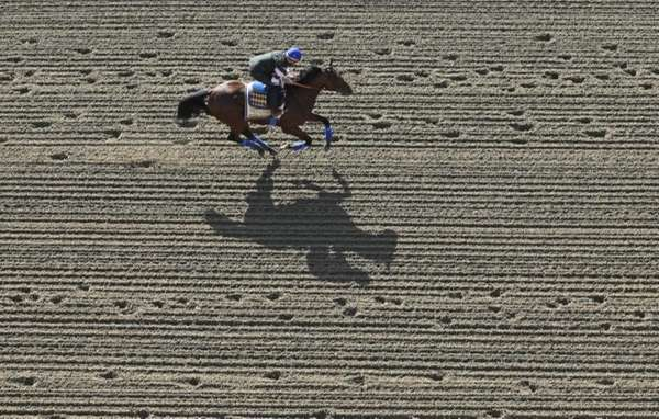 Kentucky Derby winner American Pharoah, with exercise rider