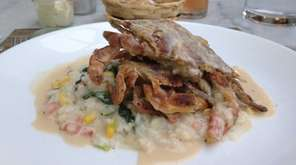Soft-shell crabs on a bed of risotto is