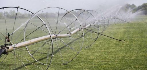 Irrigation wheels water a sod farm in Mattituck
