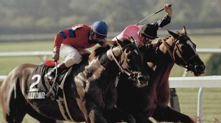 Steve Cauthen raises his whip to speed Affirmed,