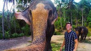 """Instagram user Christian LeBlanc's """"elphie,"""" or elephant selfie,"""