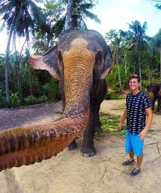 "Instagram user Christian LeBlanc's ""elphie,"" or elephant selfie,"