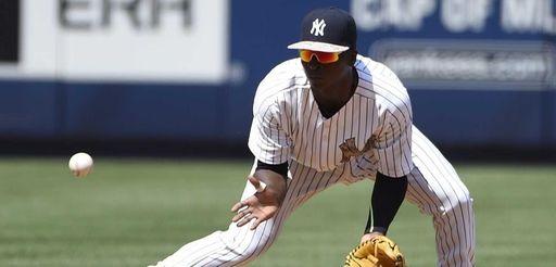 New York Yankees shortstop Didi Gregorius fields a