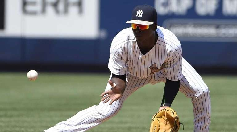 New York Yankees shortstop Didi Gregorius fields a