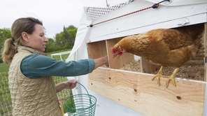 Holly Browder collects eggs at her farm, Browder's