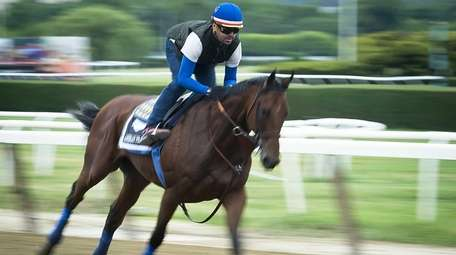 Triple Crown challenger American Pharoah galloping around the