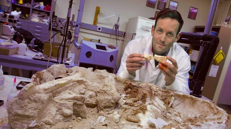 Stony Brook University paleontologist Michael D'Emic, seen holding