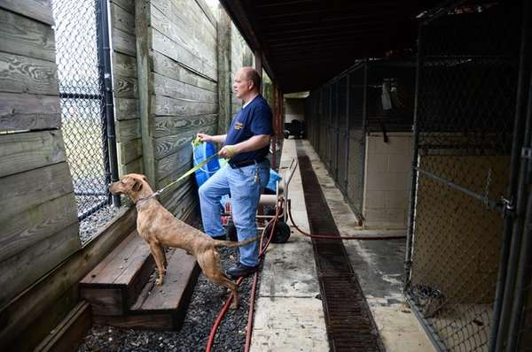 Kennel attendant Glen Hillebrand waits to let pit