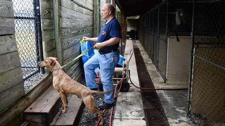 Kennel attendant Glen Hillebrand waits to let pit