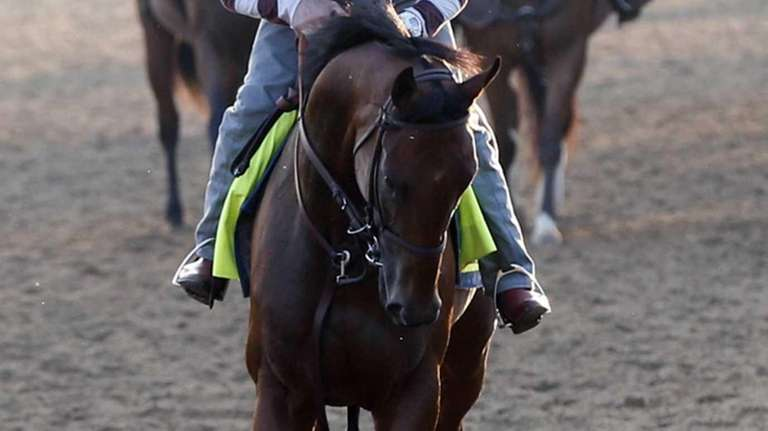 Triple Crown winner American Pharoah, ridden by exercise