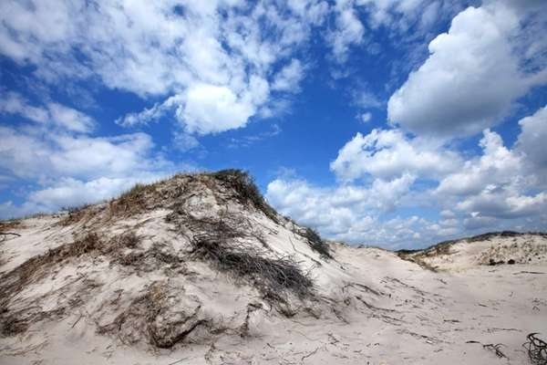 The Otis Pike High Dune Wilderness at the