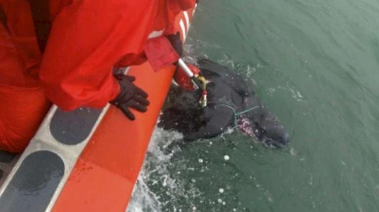 Coast Guard Station Montauk crew members assisted in
