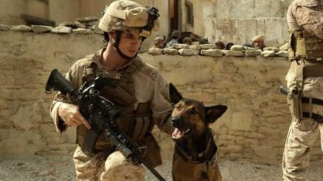 Robbie Amell as Kyle Wincott with army dog