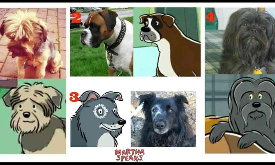 Many of the dogs featured on