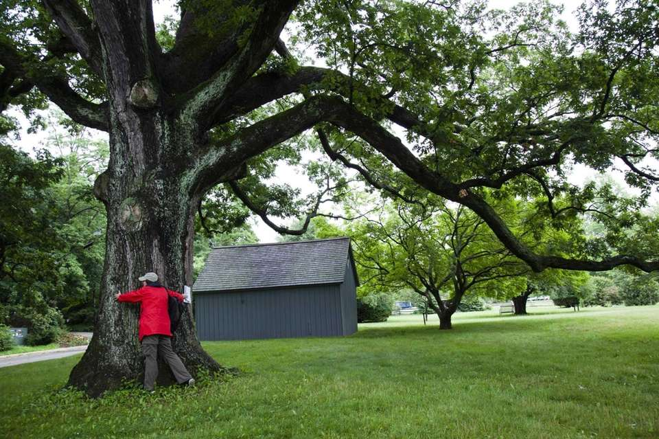 Sagamore Hill, Cove Neck Walk along the same