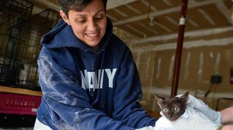 Susan M. Hansen, newly appointed Smithtown Animal Shelter