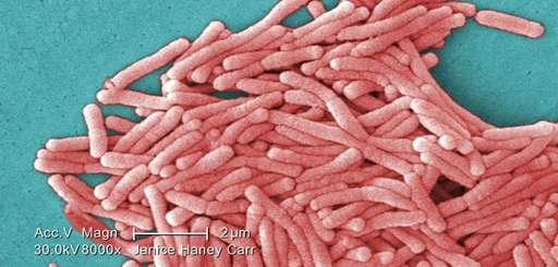 Legionnaires' disease is a severe form of pneumonia