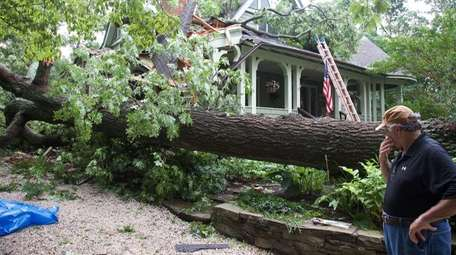 Charlie Russo stands near a downed tree that