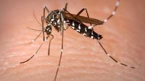 Suffolk County is planning ground spraying Wednesday, weather