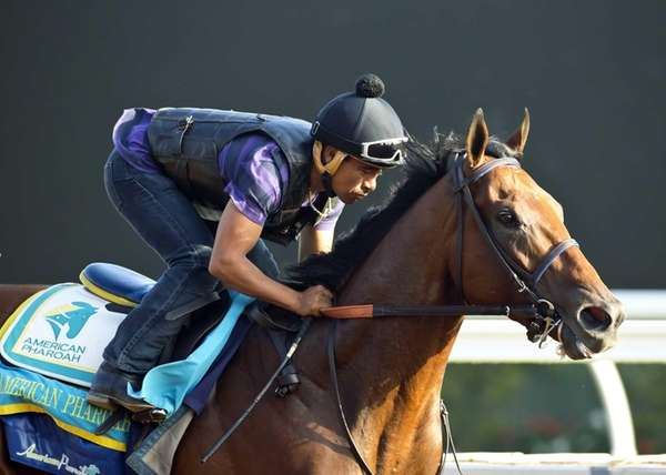 Triple Crown winner American Pharoah works out for