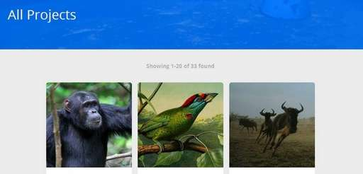 Screengrab from website: zooniverse.org