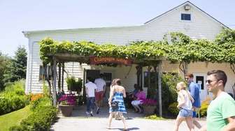 Pugliese Vineyards is a family owned and operated