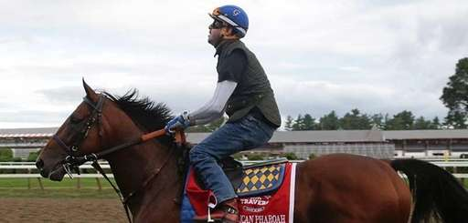 Triple Crown winner American Pharoah, with exercise rider