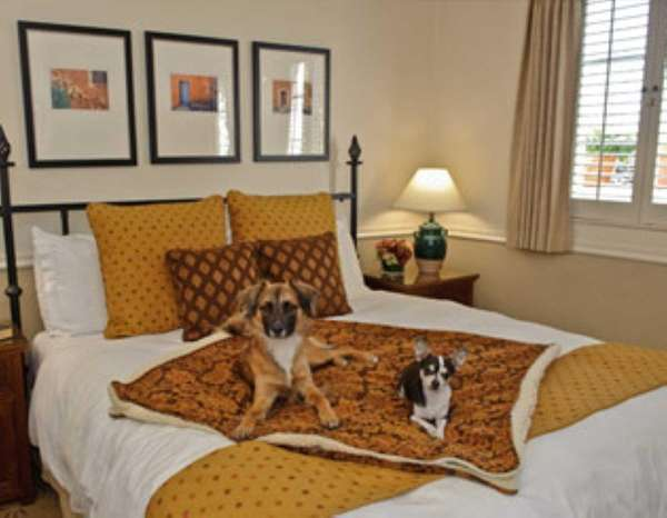 The Cypress Inn in Carmel, Calif. is pet