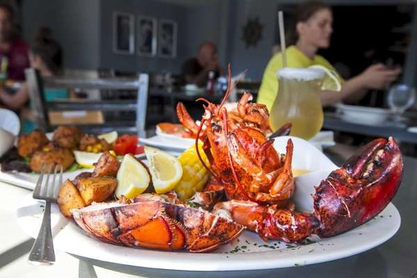 Lobster is served steamed, broiled, oreganata or fra