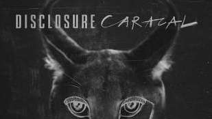 Disclosure's