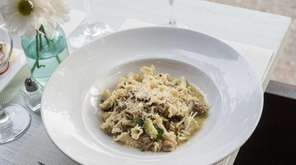 Campanelle pasta, with fennel sausage, black olives, squash