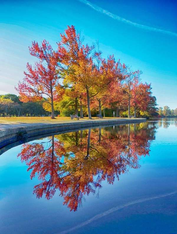 Fall foliage at Belmont Lake State Park in