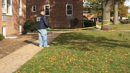 Nassau County police investigate the yard where three
