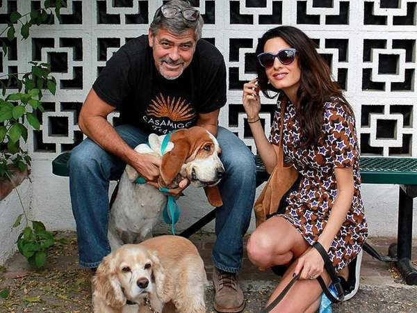 George and Amal Clooney with their new adopted