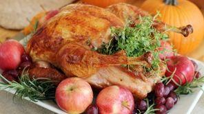 Food Thanksgiving Talking Turkey