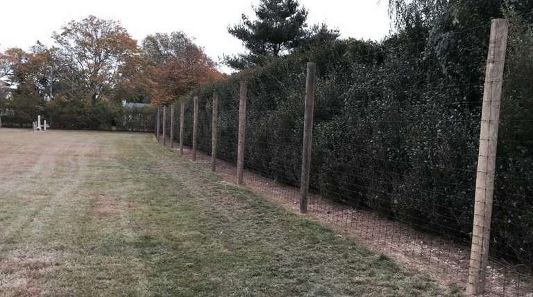 Officials say a 10-foot high fence that Mirek