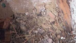 A large pile of disarticulated human skeletal remains