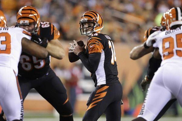 Cincinnati Bengals quarterback Andy Dalton (14) looks to